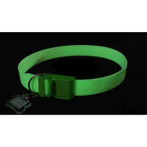 FurEver Brite Glow in the Dark Pet Safety Collar