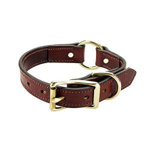 Mendota Products Wide Hunt Dog Collar