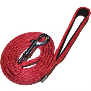 PetsLovers Durable Dog Leash