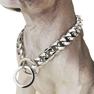 Designer Dog Collar Fancy Metal Slip Chain