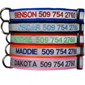GoTags Reflective Safety Personalized Dog Collars