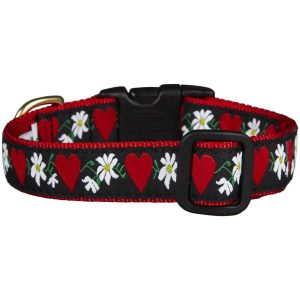 The Heart and Flowers Dog Collar