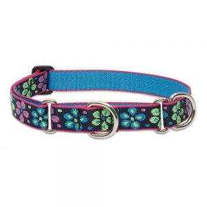 Lupine One Inch Flower Power Martingale Combo Collar