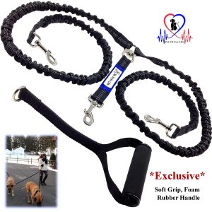 Pet Fit For Life Shock Absorbing Dual Leash For Dogs