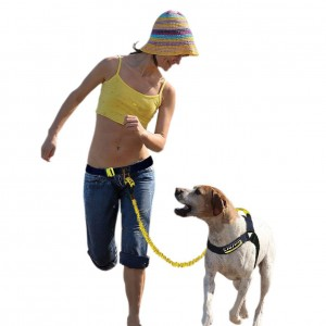 Fusion Pet K9 Hands Free Fitness Pack