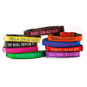 Go Go Cute Puppy Personalized Dog Collars