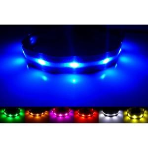 GoDoggie-GLOW USB Rechargeable LED Dog Safety Collar