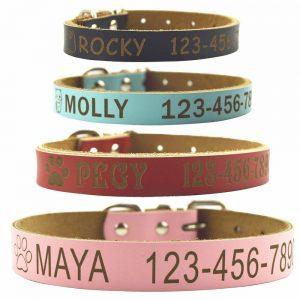 Shorven Custom Engraved Leather Dog Collar
