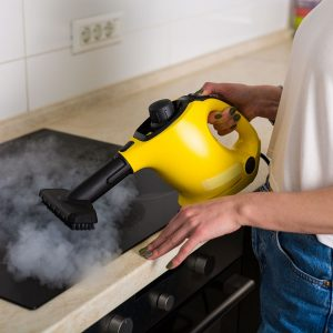 Best Steam Cleaner • Reviews & Buying Guide (January 2021)